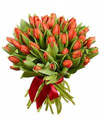 Где в самаре можно купить тюльпаны купить розы в горшке