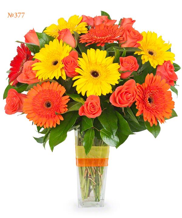 Купить в казани цветы гербера доставка цветов по россии ростов