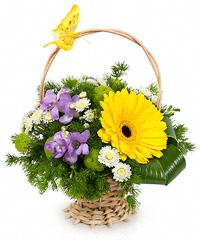 Купить цветы в корзине недлрого межкомнатная дверь стиль цветы с бабочкой заказать в пскове