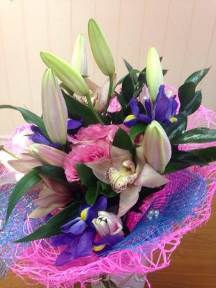 Купить комнатные цветы людмила хабаровск цветы для ободков купить оптом