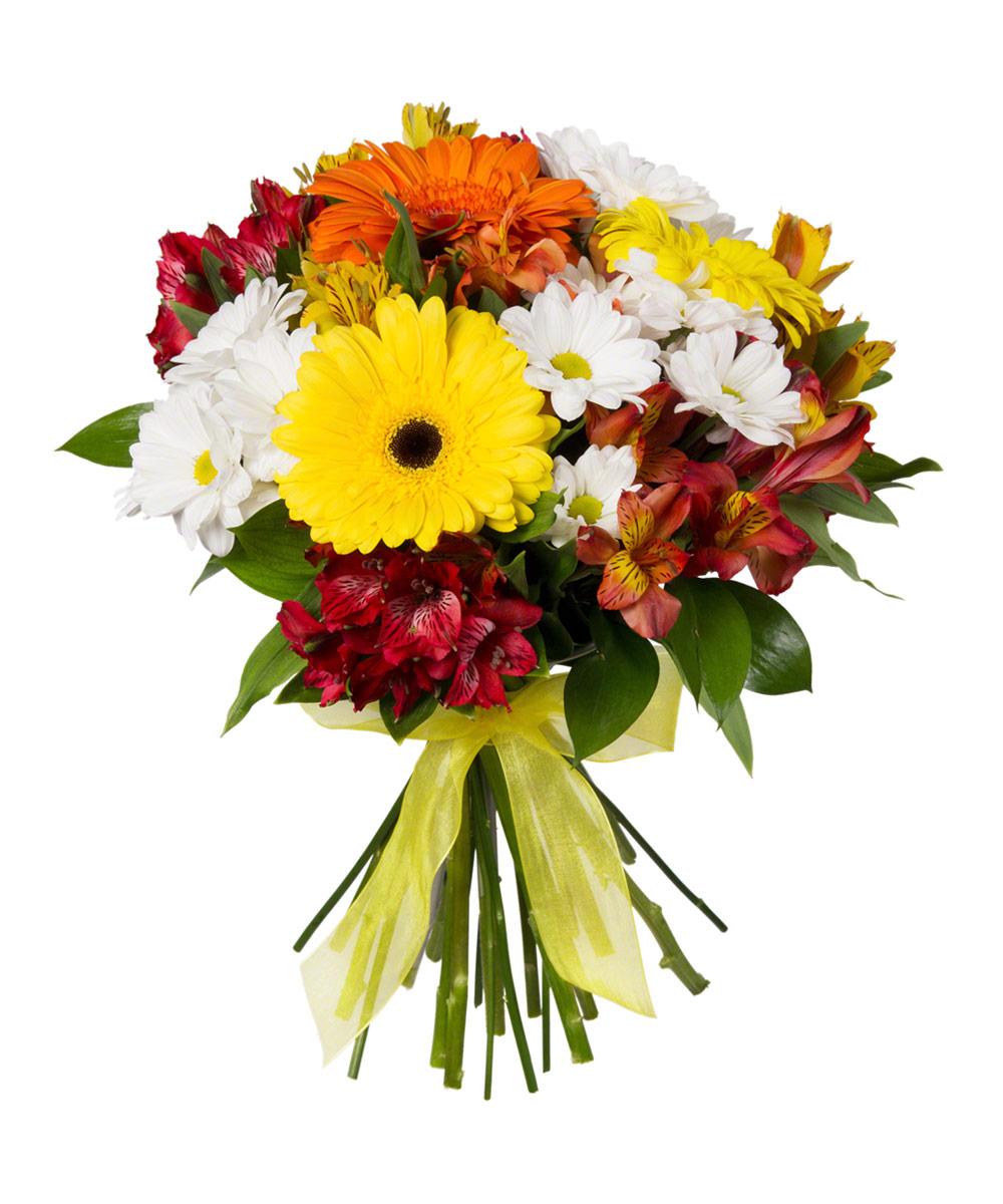 Киса и цветы весенние фото компоненты