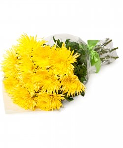 """Букет из цветов """"Букет из 11 желтых хризантем"""" 25 - 45 см."""