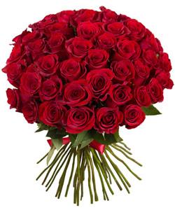 """Букет из цветов """"Букет из 51 красной розы"""" 40 - 60 см."""