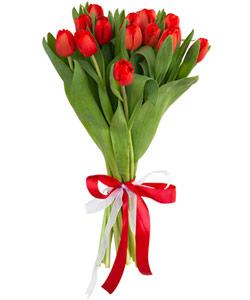 """Букет из цветов """"Букет из 15 красных тюльпанов"""" 18 - 30 см."""